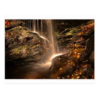 Base of Trap Falls in Autumn Postcard