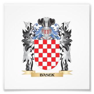 Basek Coat of Arms - Family Crest Art Photo