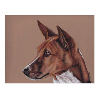 Basenji Colored Pencil Art  Postcard