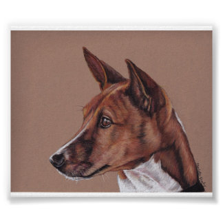 Basenji Dog Art Print