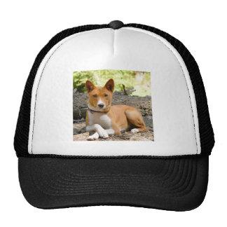 Basenji Dog Cap
