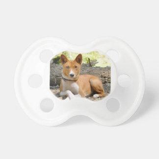 Basenji Dog Dummy