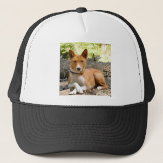 Basenji Dog Trucker Hat