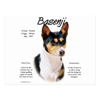 Basenji (tricolor) History Design Postcard