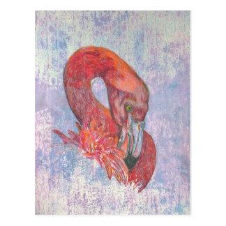 Bashful Flamingo Postcard