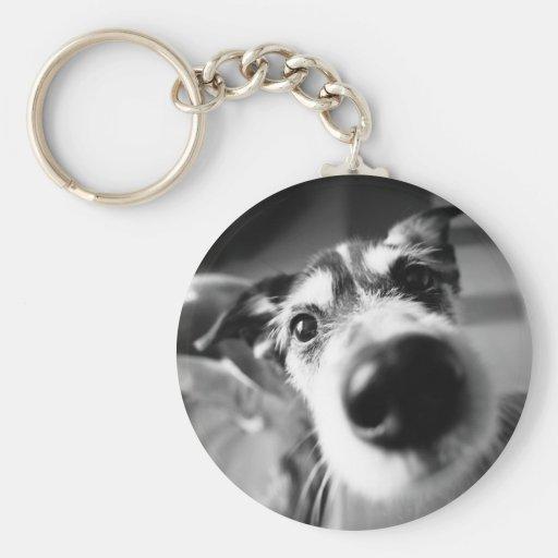 Basic Button Keychain funny dog