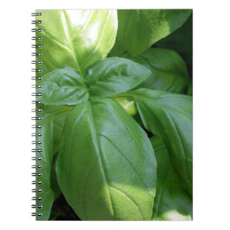Basil Leaves Spiral Note Book