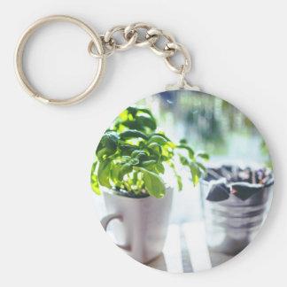 Basil Plant Key Ring