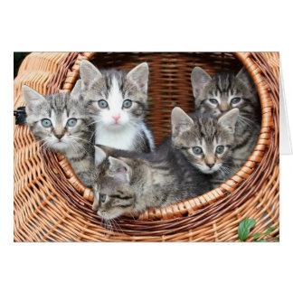 Basket full of fur babies kittens missing you card