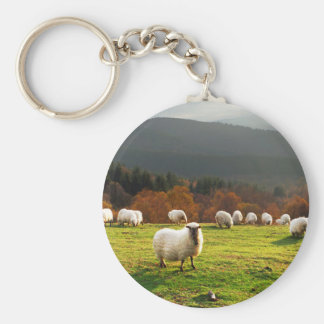 basque country typical latxa sheep basic round button key ring