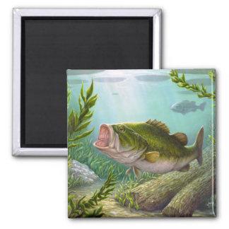 Bass Fish Magnet