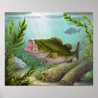 Bass Fish Poster