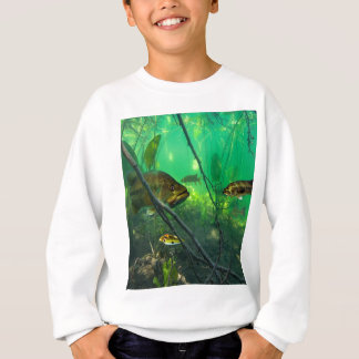 Bass Sweatshirt