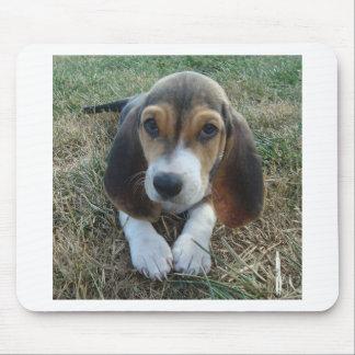 Basset Artésien Normand Puppy Dog Mouse Pad
