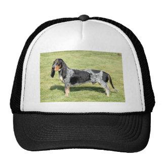 Basset Bleu de Gascogne Dog Cap