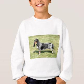 Basset Bleu de Gascogne Dog Sweatshirt