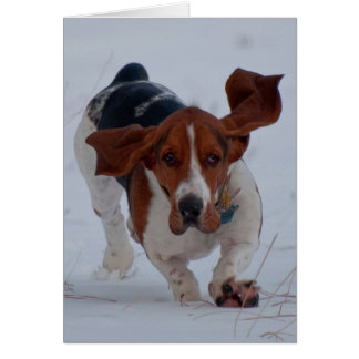 Basset Fast Note Card
