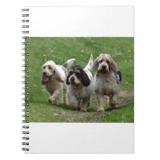 Basset Griffon Vendéen, Grand Dog Notebook