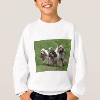Basset Griffon Vendéen, Grand Dog Sweatshirt