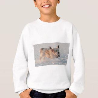 Basset Griffon Vendéen, Grand Puppy Dog Sweatshirt