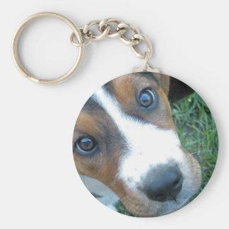 Basset Hound 02 Key Ring
