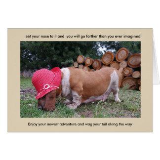 Basset hound card congratulations