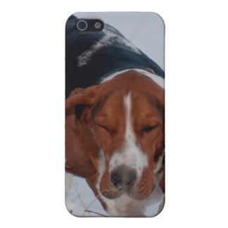 Basset Hound Case 1 Case For The iPhone 5
