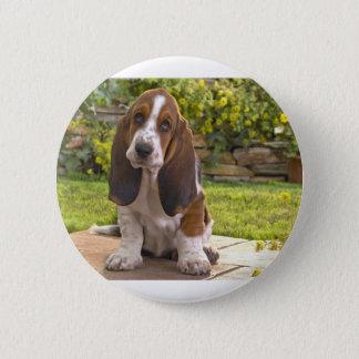 Basset Hound Dog 6 Cm Round Badge