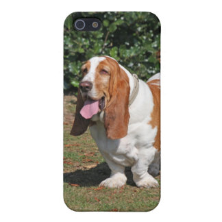 Basset hound dog cute photo iphone 5c case, gift iPhone 5/5S cover