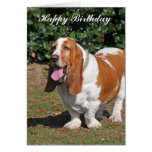 Basset hound dog happy birthday  greeting card