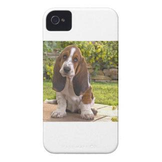Basset Hound Dog iPhone 4 Cases