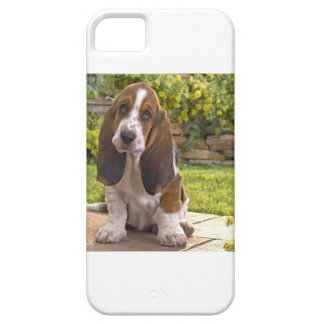 Basset Hound Dog iPhone 5 Covers