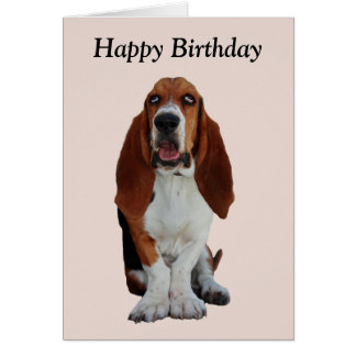 Basset Hound dog photo happy birthday card