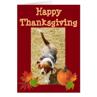"Basset Hound ""Happy Thanksgiving"" Card w/Pumpkin"