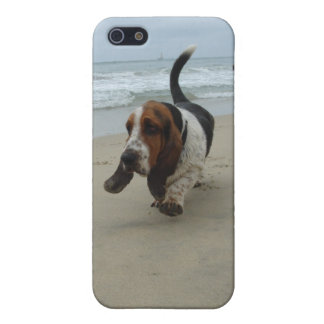 Basset Hound iPhone 5/5S Covers