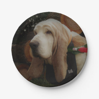 Basset hound paper plates 7 inch paper plate