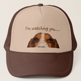 Basset Hound peeking in Trucker Hat
