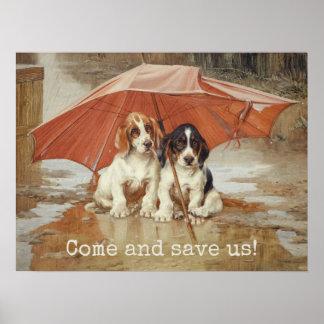 Basset hound puppies under umbrella CC0867 Trood Poster