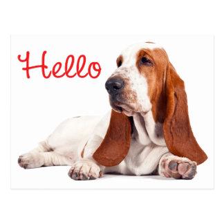 Basset Hound Puppy Dog Red Hello Thinking of You Postcard