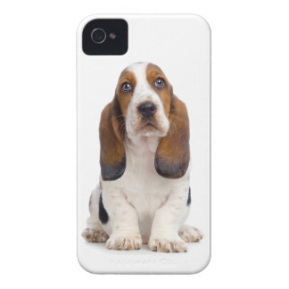 Basset Hound Puppy iPhone 4/4S Case
