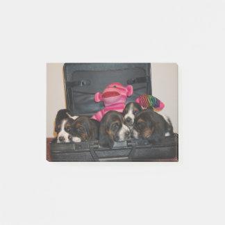 Basset hound puppy note pad