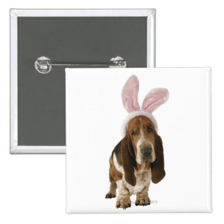 Basset hound with bunny ears button