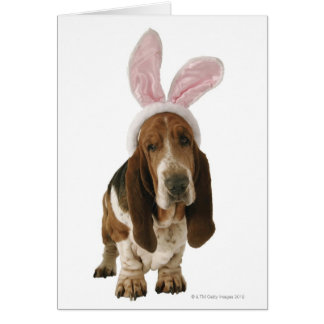 Basset hound with bunny ears greeting card