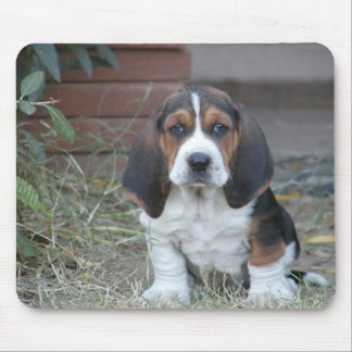 Basset Puppy Mouse Pad