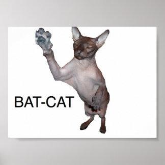 bat-cat poster