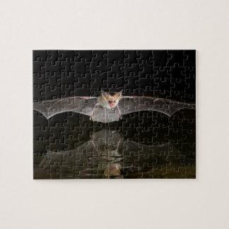 Bat drinking in flight, Arizona Jigsaw Puzzle