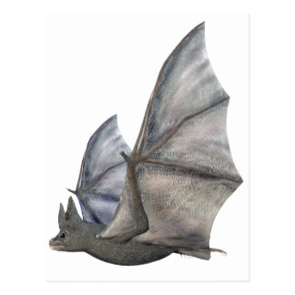 Bat In Side Profile with Wings in Upstroke Postcard