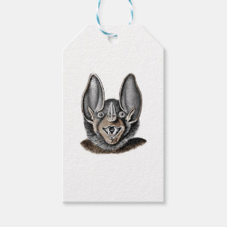 Bat with Big Ears