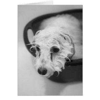 Bath Day Card