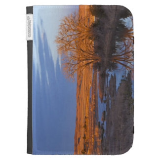 Bathed in sunset light the Calamus River Kindle Keyboard Case
